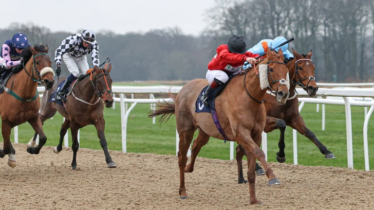 Manjaam: Laura Pearson drives her mount home for victory in the opener at Newcastle
