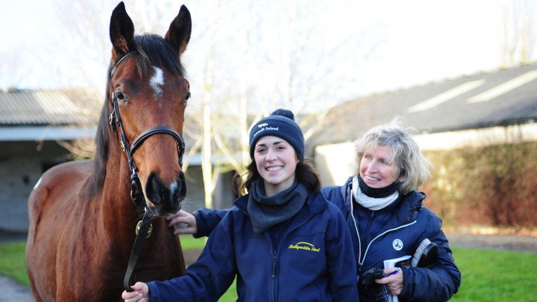Ballyreddin Stud's Order Of St George colt, pictured with Mia Harries (left) and Pascale Menard, made a good impression at €90,000