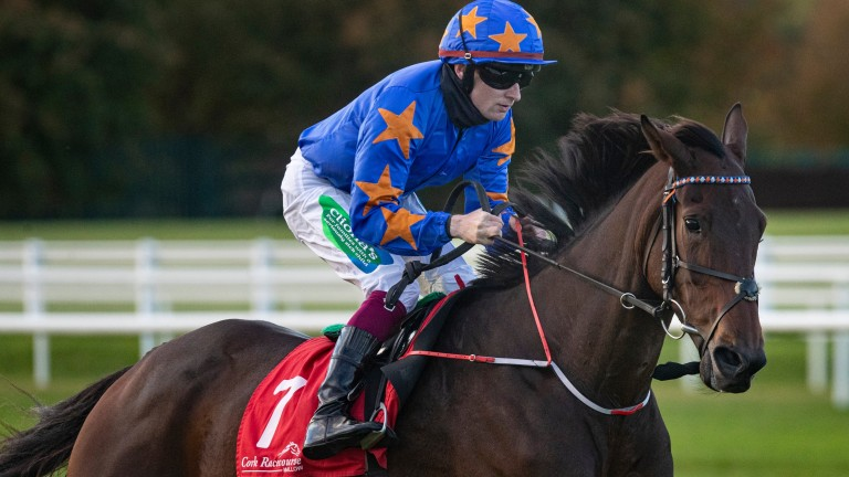 """Ronan McNally: """"We won't hit the panic button if he doesn't look himself in time for Cheltenham"""""""