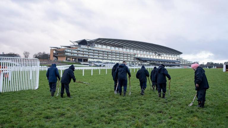 Ascot hosts quality racing on Friday and Saturday