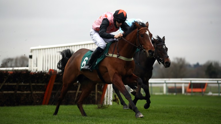 Hamilton Dici carries the Valentine Bloodstock silks to victory at Warwick