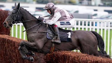 """""""He's been the star of our season"""" - Sao wins at Newbury in December"""