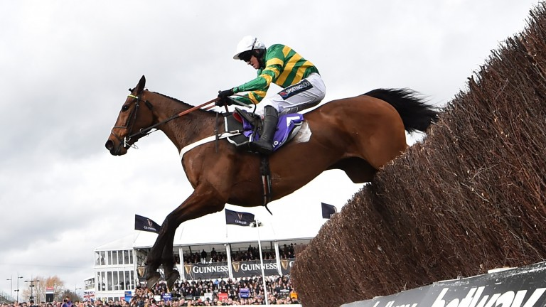 Champ: will drop back in trip for the Game Spirit Chase
