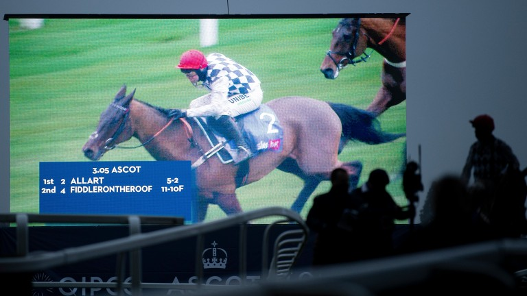 Screen star: Altior walks back into the winner's enclosure alongside a shot of his success