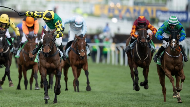 Ronald Pump (right) was second to Lisnagar Oscar (left) in the Paddy Power Stayers Hurdle at Cheltenham