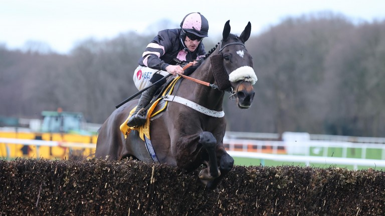 Sam's Adventure is favourite for the Eider after Monday's confirmation stage