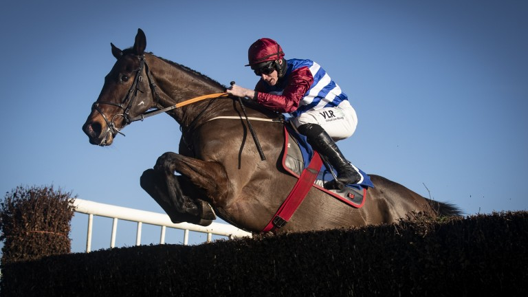 """Jack Kennedy on Escaria Ten: """"He's a nice horse and hopefully he can keep progressing from that"""""""