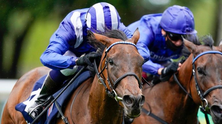 Nazeef: two-time Group 1 winner is among the star names in Mohaather's debut book