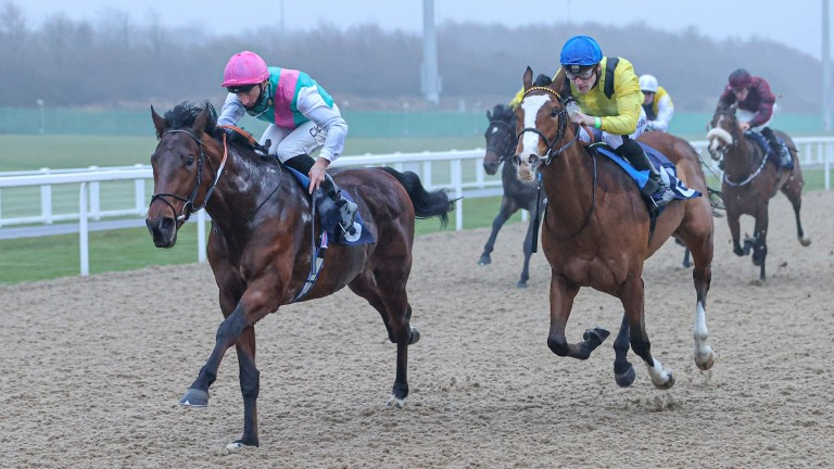 Duty Of Care (left): the Kingman half-brother to Expert Eye got off the mark at Newcastle