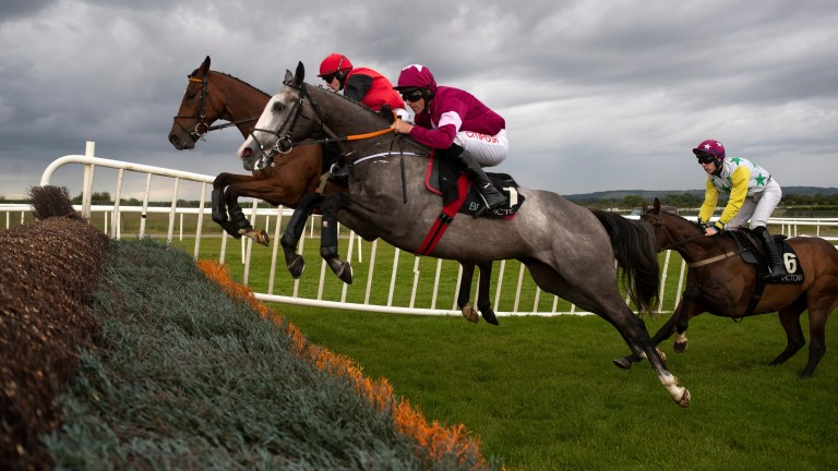 Farclas: former Triumph Hurdle hero can have big say in valuable Leopardstown highlight