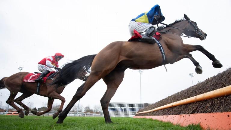 Shan Blue (near) leads The Big Breakaway at the last at Kempton