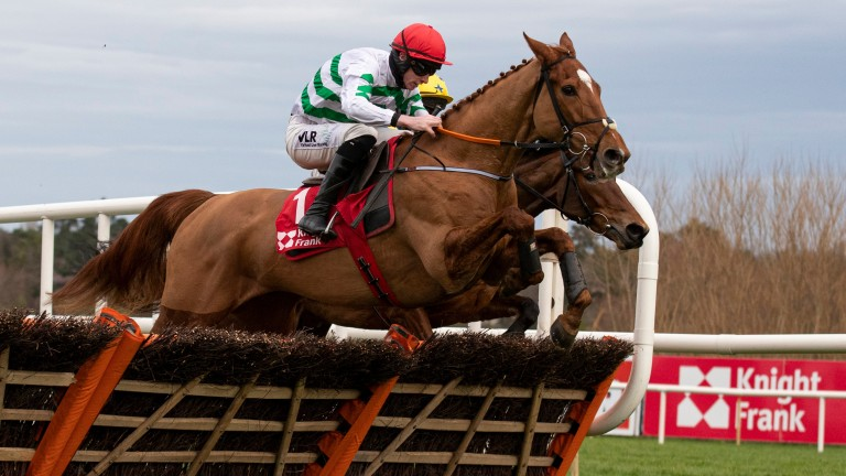 Zanahiyr: a ready winner of the Grade 2 Knight Frank Juvenile Hurdle