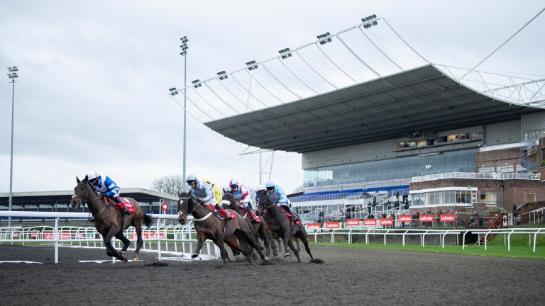 The BHA has been told that no formal discussions have taken place within government about the suspension of elite sport