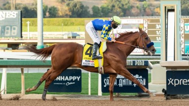 Charlatan and jockey Mike Smith win the Malibu Stakes