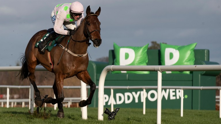 Chacun Pour Soi: Champion Chase favourite is set to compete at the Dublin Racing Festival
