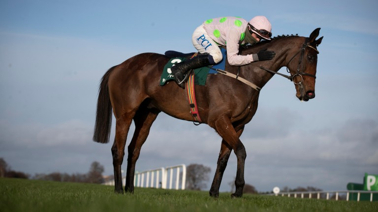 Chacun Pour Soi: the headline act at Leopardstown on Saturday