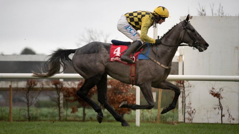 Gaillard Du Mesnil and Paul Townend win the tote.ie Maiden Hurdle at Leopardstown
