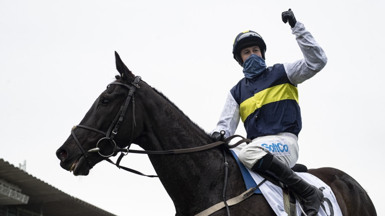 Franco De Port: the son of Coastal Path after winning the Racing Post Novice Chase