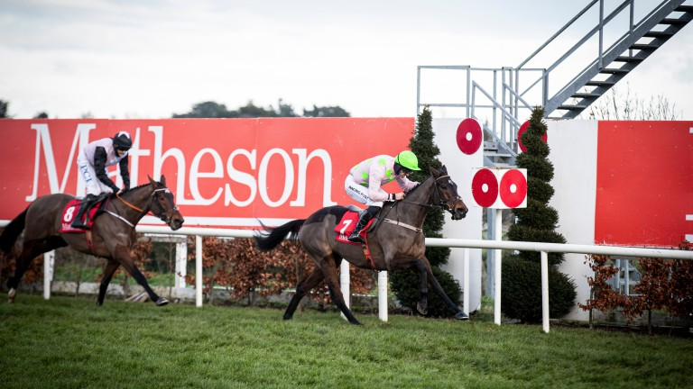 Hat-trick heroes: Sharjah and Patrick Mullins combine for a third win in the Grade 1 Matheson Hurdle at Leopardstown