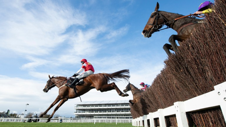 The Big Breakaway: rated as the Tizzards best chance of a festival winner