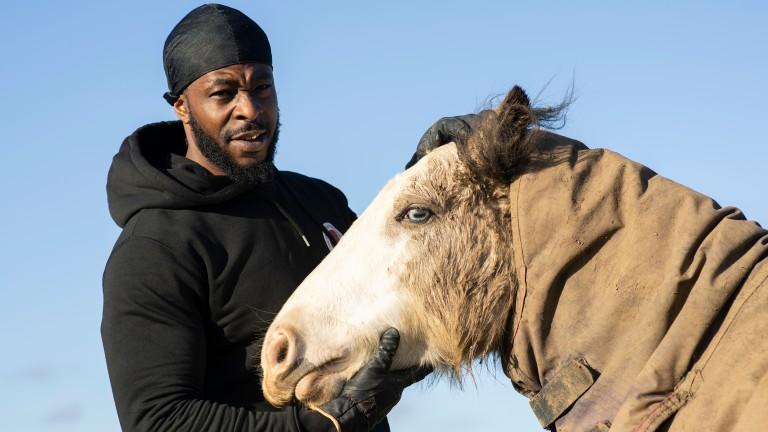 Freedom Zampaladus: founder of the Urban Equestrian Academy
