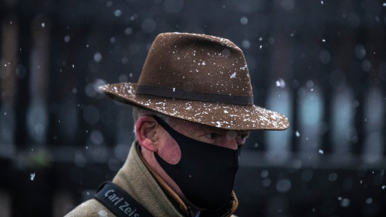 Willie Mullins: will be solely represented by Blue Lord in the Lawlor's Of Naas Novice Hurdle on Sunday