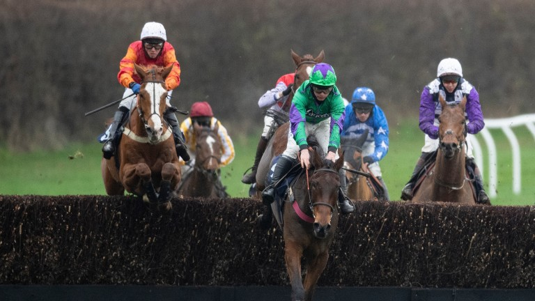 Benevolentdictator (red and orange silks, left) is on a hat-trick after wins at Lingfield and Plumpton