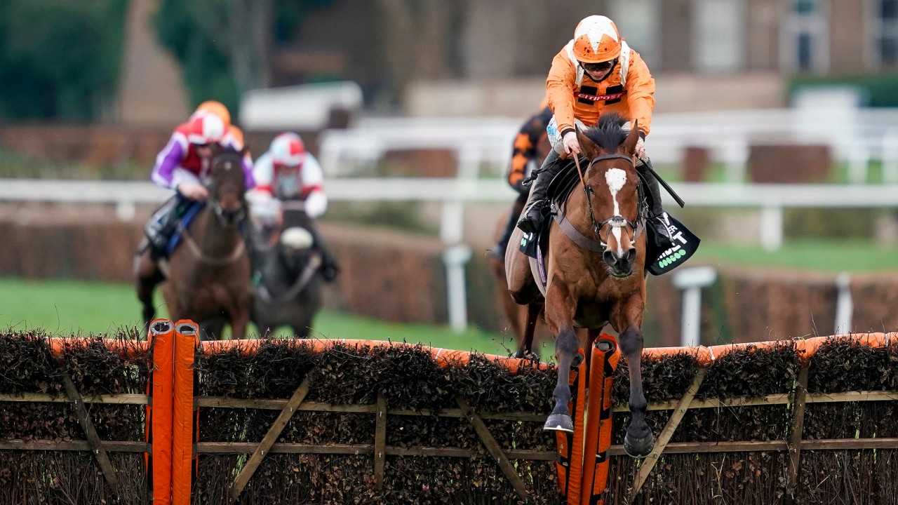 tolworth hurdle betting odds
