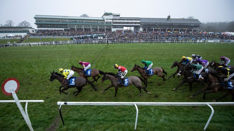Welsh grand national ante post betting monmore puppy derby 2021 betting