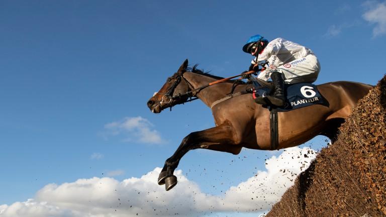 Hitman: won his tune-up race at Newbury last time