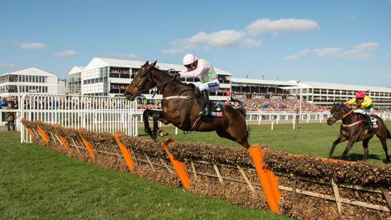 Douvan puts in a serene leap at the final flight in the 2015 Supreme