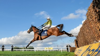 Heading for the top: Henry VIII Novices' Chase hero Allmankind (Harry Skelton) has Shishkin in his sights