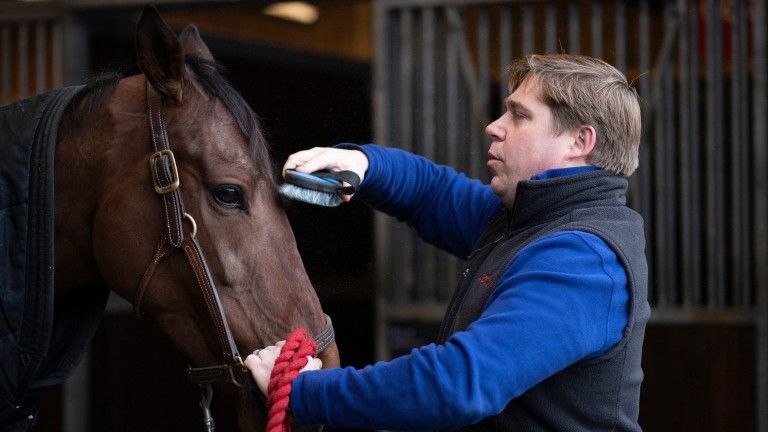 Trainer Dan Skelton puts the finishing touches to Arkle hopeful Allmankind at home