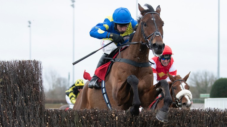 Shan Blue won the Kauto Star Novices' Chase on his last start