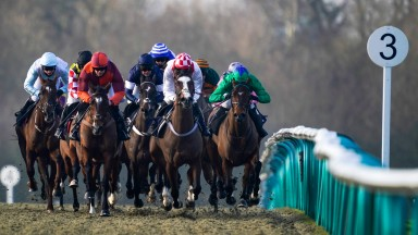LINGFIELD, ENGLAND - JANUARY 08: Paddy Brennan riding City Derby (L, blue) on their way to winning The Visit attheraces.com Standard Open NH Flat Race at Lingfield Park Racecourse on January 08, 2021 in Lingfield, England. Due to the Coronavirus pandemic,