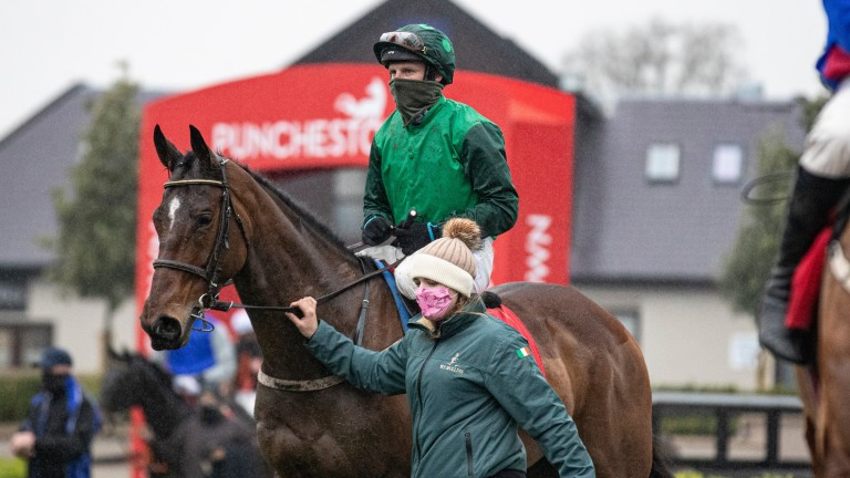 Blue Lord: another option for team Mullins in the Supreme