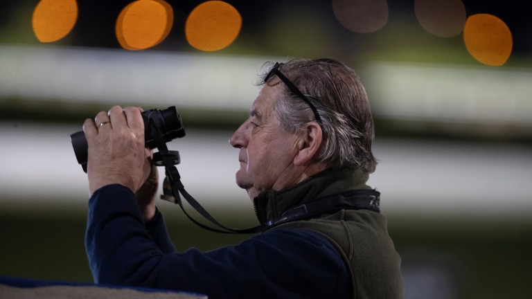 Noel Meade: has yet to confirm whether Beacon Edge or Diol Ker will run at the Cheltenham Festival