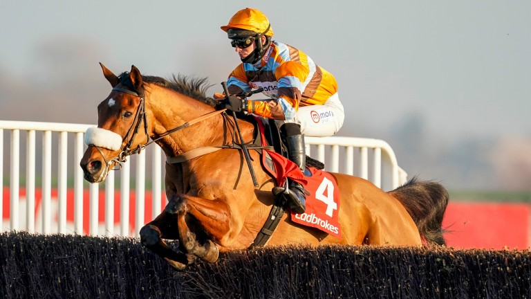 Master Tommytucker: won despite a mistake at the final fence at Kempton