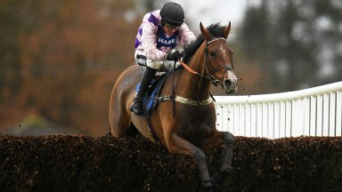 EXETER, ENGLAND - NOVEMBER 13: Notachance ridden by Tom Cannon jumps the alst on their way to winning the RGB Building Supplies Chase (Novices Limited Handicap) at Exeter Racecourse on November 13, 2019 in Exeter, England. (Photo by Harry Trump/Getty Imag