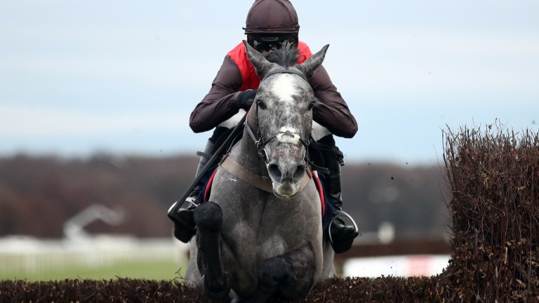 Stratagem, owned by David Maxwell, produces a big leap for Harry Cobden on Monday