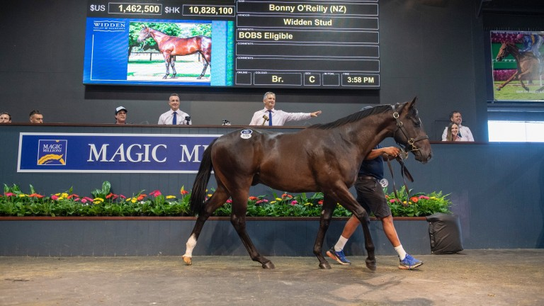 Widden Stud's Snitzel colt tops the opening day of the Magic Millions Yearling Sale when selling to Tom Magnier for $1.9 million