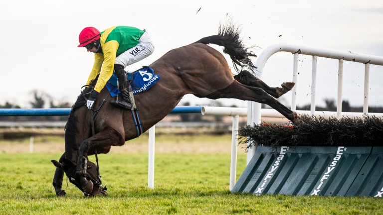 Sizing Pottsie comes down at the last when in a clear lead in the Fairyhouse feature