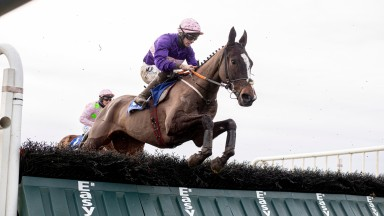 Percy Warner runs out a possibly fortunate winner of the conditions hurdle at Fairyhouse