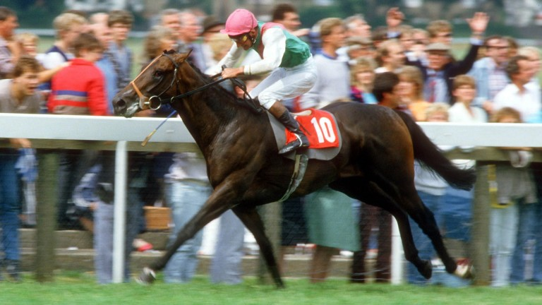 Dancing Brave: another Abdullah ace