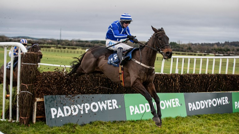 Energumene: impressed at Naas on Wednesday