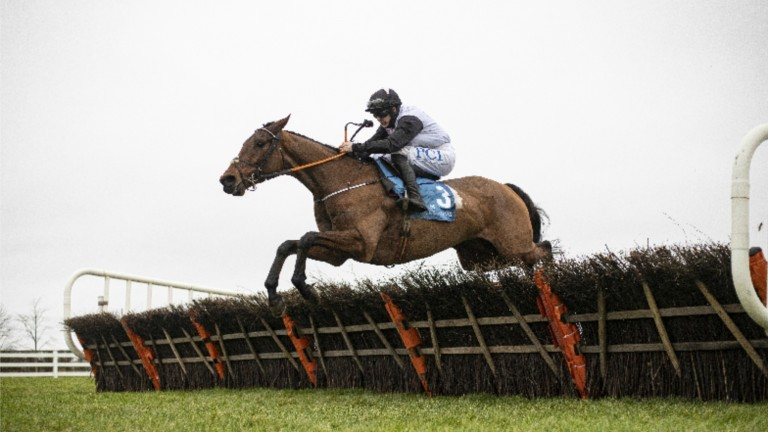 Bob Olinger claimed Grade 1 honours at Naas on Wednesday