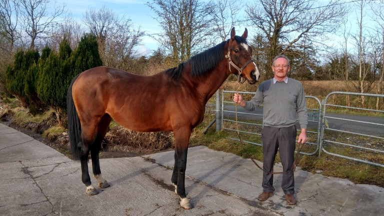John Lynch with stallion Gladiatorus