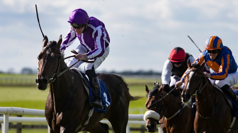 High Definition has been declared for Thursday's Dante Stakes