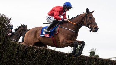 Envoi Allen: made it 11 in a row under rules at Punchestown