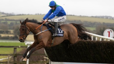 Owl Creek Bridge and Conor McNamara clear the last to land the beginners' chase at Punchestown
